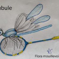 Résultats concours dessins Mascotte école de badminton
